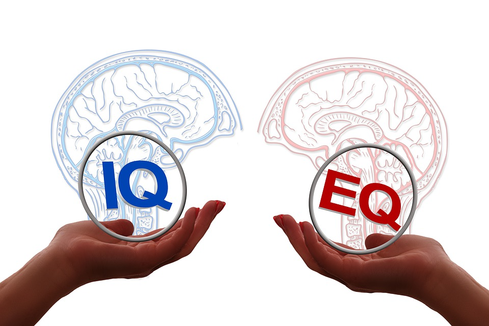 Notes and references on Emotional Intelligence